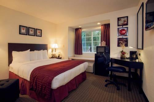 Jacksonville Hotel Plaza And Suites, FL 32218 near Jacksonville International Airport View Point 12