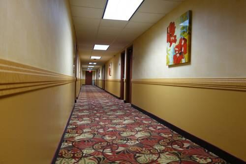 Ramada Sacramento, CA 95821 near Sacramento International Airport View Point 15