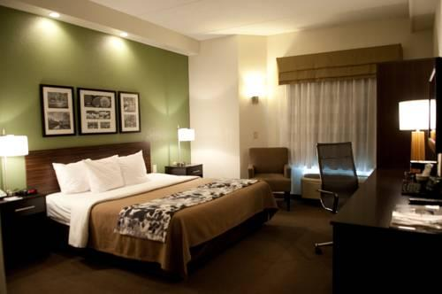 Sleep Inn & Suites Buffalo Airport, NY 14225 near Buffalo Niagara International Airport View Point 11