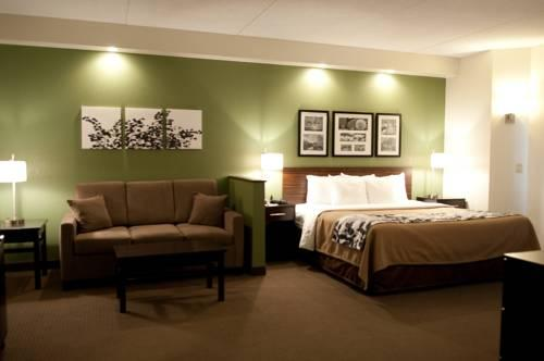 Sleep Inn & Suites Buffalo Airport, NY 14225 near Buffalo Niagara International Airport View Point 17