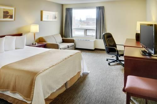 Travelodge Hotel Vancouver Airport, BC V6X 3K4 near Vancouver BC View Point 13