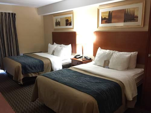 Comfort Inn Airport West, ON L4W3Z4 near Toronto Pearson International Airport View Point 18