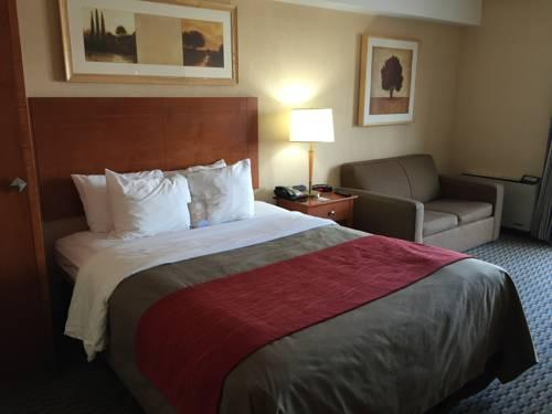 Comfort Inn Airport West, ON L4W3Z4 near Toronto Pearson International Airport View Point 7