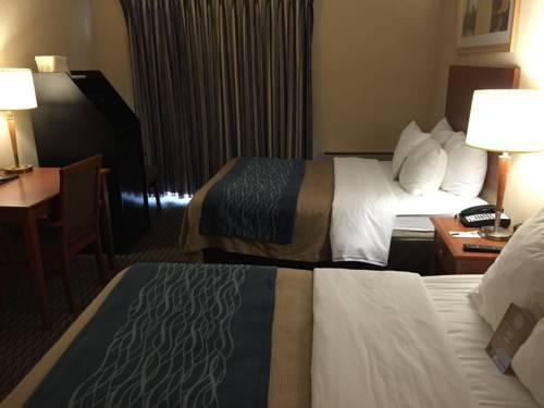 Comfort Inn Airport West, ON L4W3Z4 near Toronto Pearson International Airport View Point 13