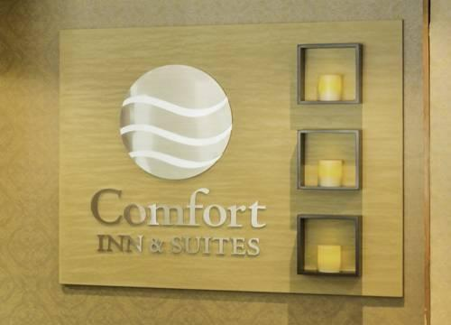 Comfort Inn BWI Airport, MD 21225 near Baltimore-washington International Thurgood Marshall Airport View Point 14