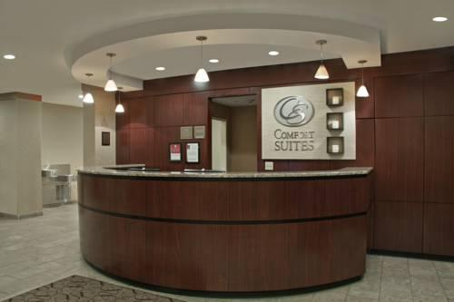 Comfort Suites Cicero - Syracuse North, NY 13039 near Syracuse Hancock International Airport View Point 6