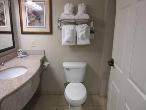 Wingate By Wyndham Charleston, SC 29406 near Charleston International Airport / Charleston Afb View Point 5