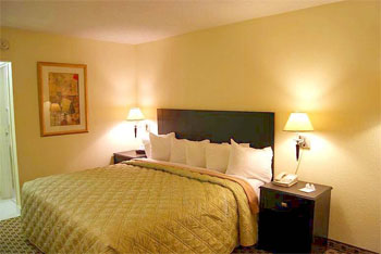 Days Inn Irving Grapevine DFW Airport North, TX 75034 near Dallas-fort Worth International Airport View Point 5