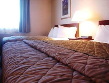 Travelodge Hotel Vancouver Airport, BC V6X 3K4 near Vancouver BC View Point 5