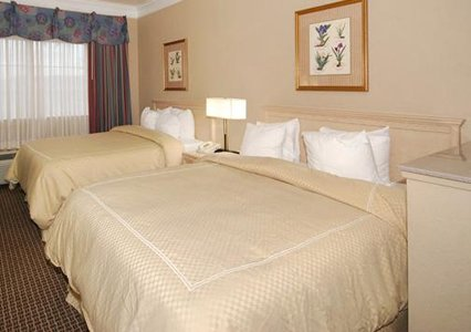Comfort Suites Humble - Houston North, TX 77339 near George Bush Intercontinental Airport View Point 3
