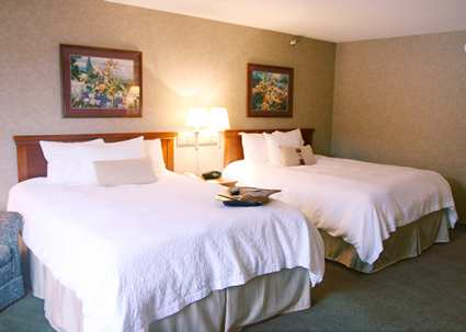 Hampton Inn Detroit/Belleville-Airport Area, MI 48111 near Detroit Metropolitan Wayne County Airport View Point 3