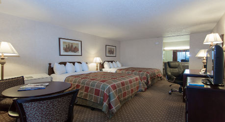 Wyndham Garden, MI 48174 Near Detroit Metropolitan Wayne County Airport View Point 3