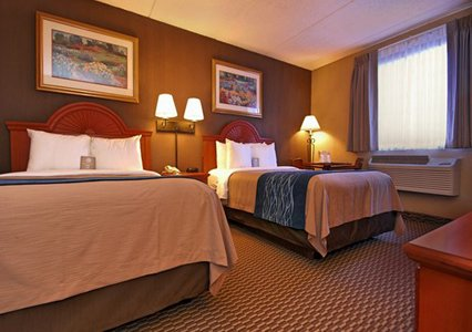 Comfort Inn University, NY 14226 near Buffalo Niagara International Airport View Point 4