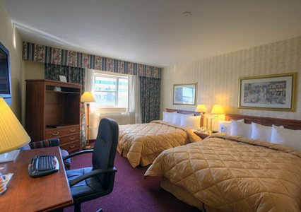 Comfort Inn Toronto Airport, ON, Canada L4V 1E4 near Toronto Pearson International Airport View Point 5