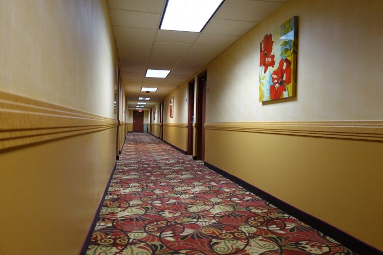 Ramada Sacramento, CA 95821 near Sacramento International Airport View Point 3