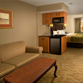 Comfort Inn & Suites Airport Dulles-Gateway, VA 20166 near Washington Dulles International Airport View Point 4