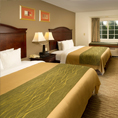 Comfort Inn & Suites Airport Dulles-Gateway, VA 20166 near Washington Dulles International Airport View Point 3