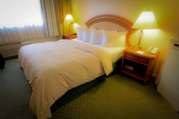 Fortune Hotel & Suites, NV 89169 near Mccarran International Airport View Point 3