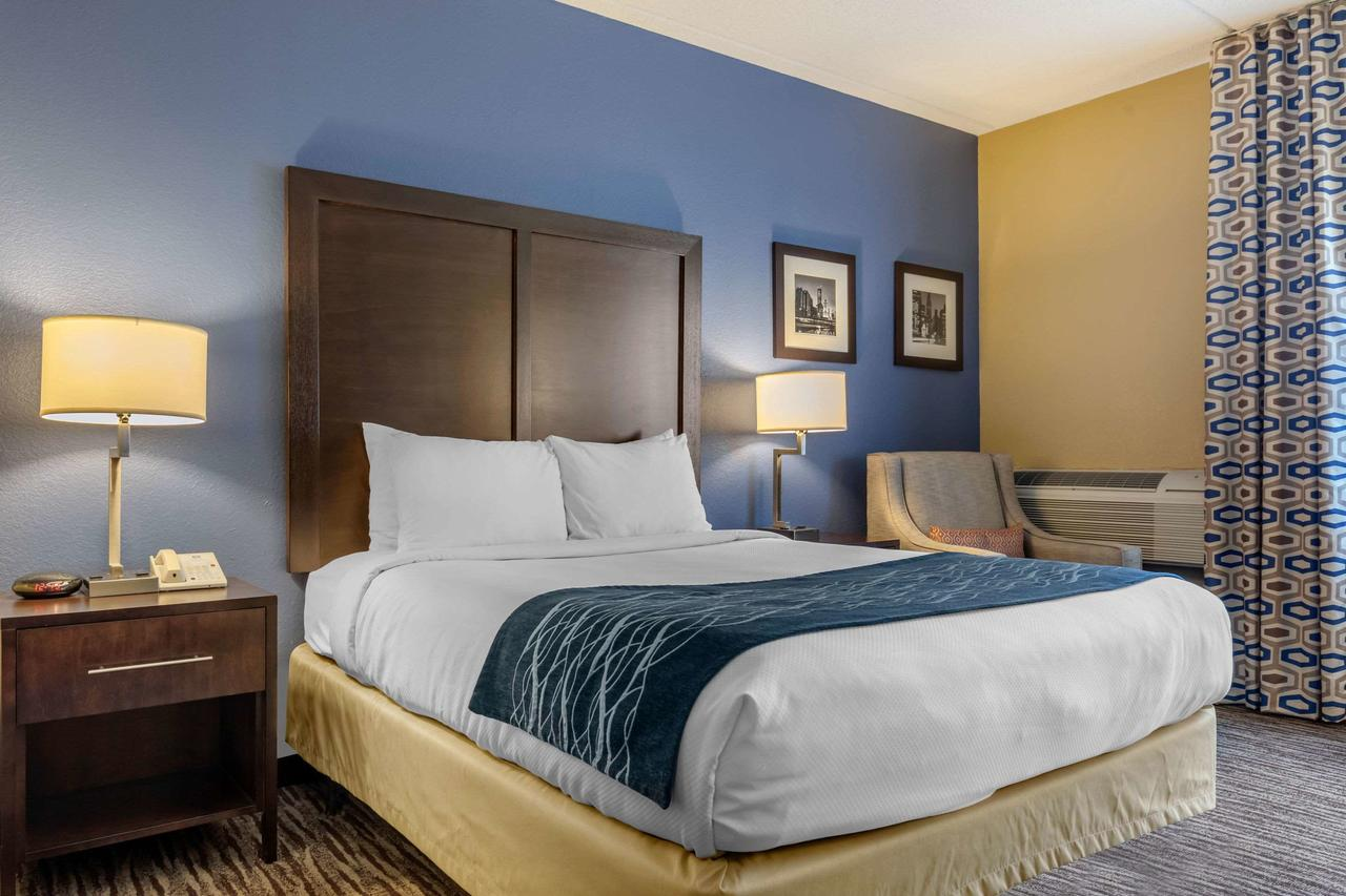 Comfort Inn Ohare, IL 60005 near Ohare International Airport View Point 4