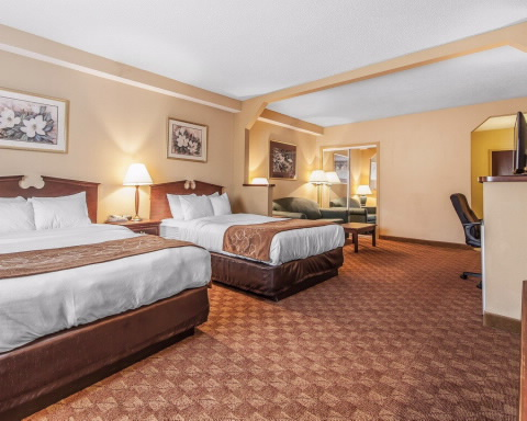 Comfort Suites Airport Alcoa, TN 37701 near Mcghee Tyson Airport View Point 6