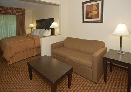 Comfort Suites Morrow, GA 30260 near Hartsfield-jackson Atlanta International Airport View Point 3