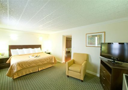 Comfort Hotel Airport North, ON, Canada M9W 6K5 near Toronto ON View Point 2