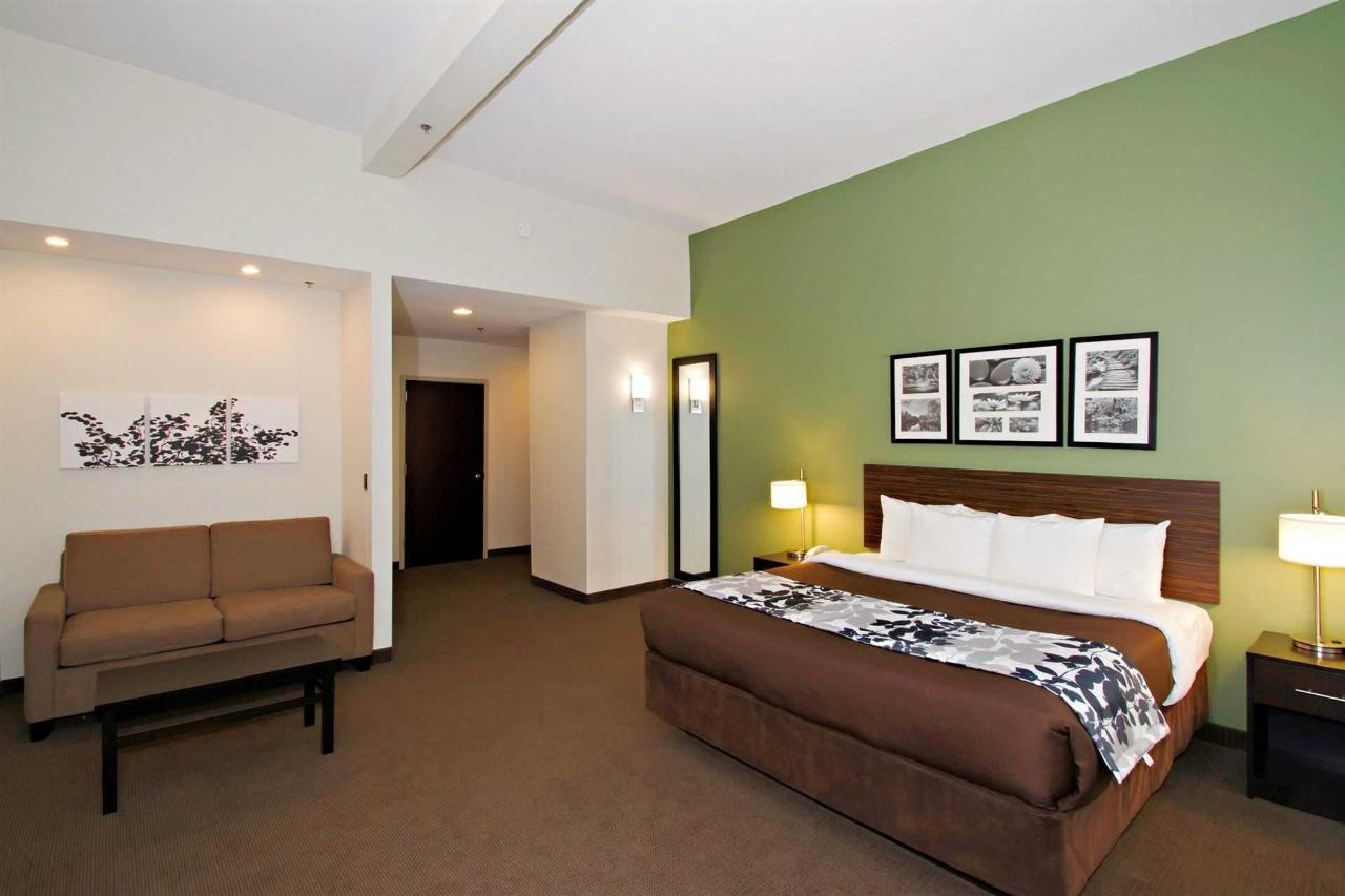 Sleep Inn and Suites Downtown Inner Harbor, MD 21202 near Baltimore-washington International Thurgood Marshall Airport View Point 3